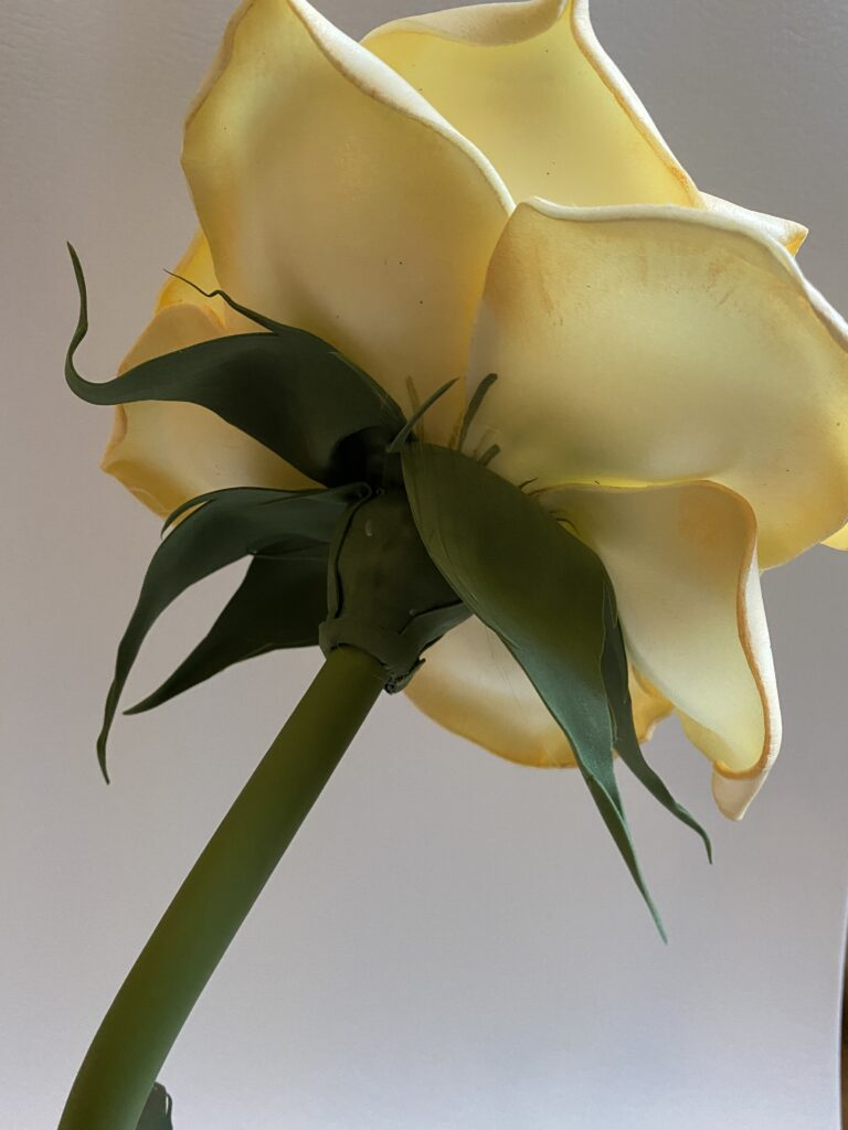 Gomma EVA e isolon sono materiali straordinari per la realizzazione dei fiori giganti per