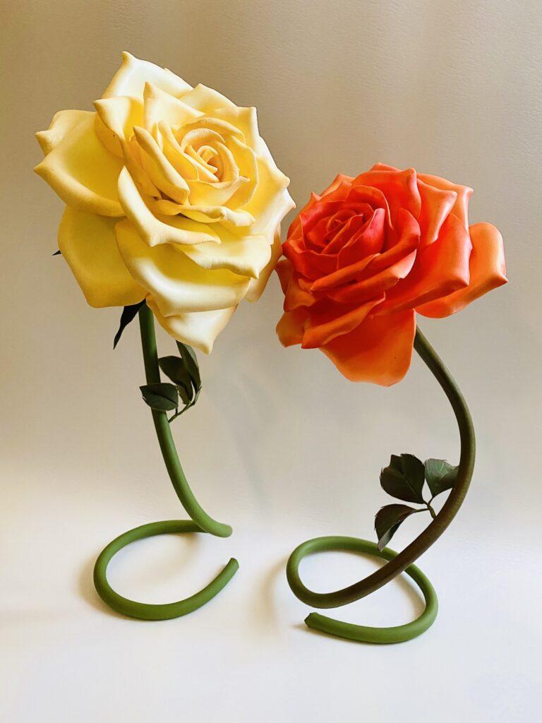 Rose in ISOLON
